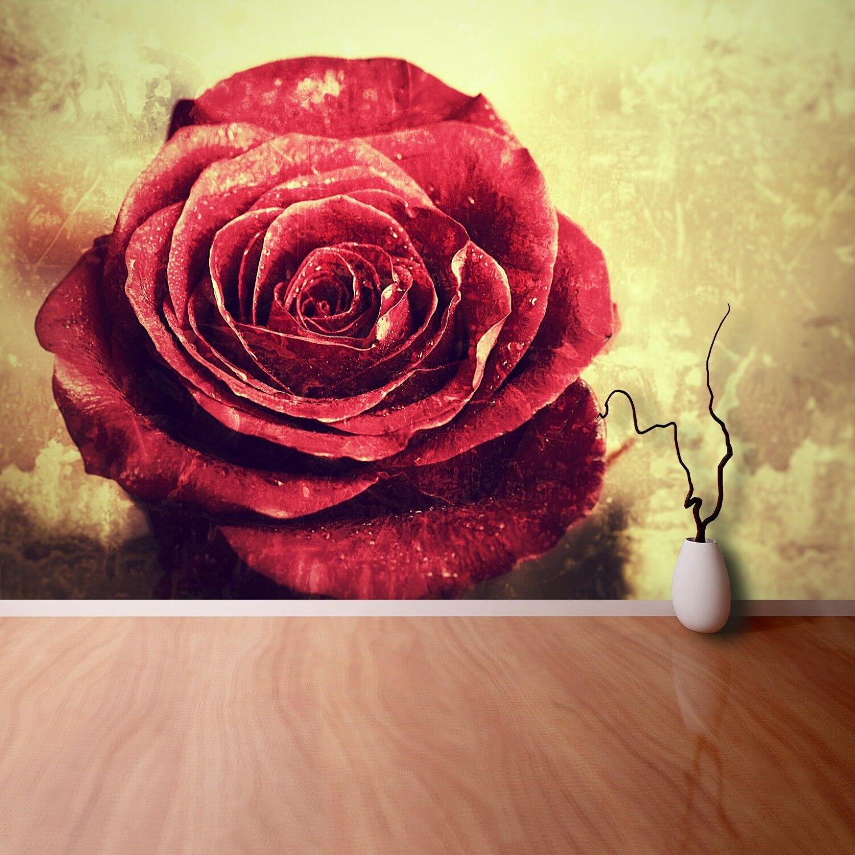 Fototapete Selbstklebend Einfach ablösbar Mehrfach klebbar Rote Rose