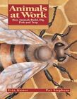 Animals at Work: How Animals Build, Dig, Fish and Trap by Etta Kaner (Paperback / softback, 2001)