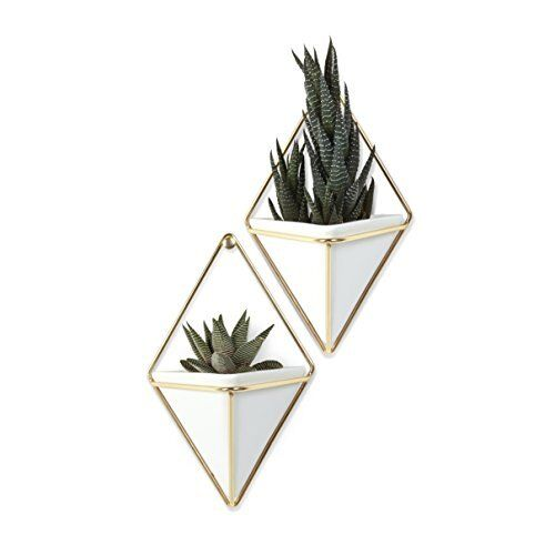 Trigg Wall Vessels Container Small Wall Planter White Ceramic Brass Metal Wire