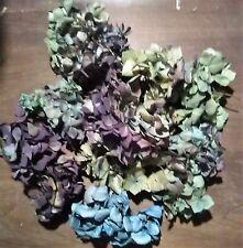 50  DRIED HYDRANGEA FLOWER PIECES, MULTICOLOR, BEAUTIFUL