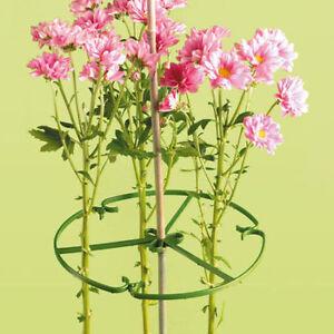 Adaptable 1 X 10 Pouces (25cm) Plante/fleur Anneau Support Pour Bambou Canes-afficher Le Titre D'origine