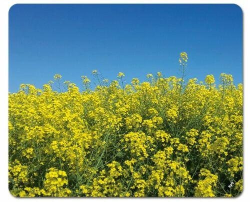 Blumen #106345 23x19cm Blühendes Rapsfeld Blauer Himmel Mauspad Mousepad