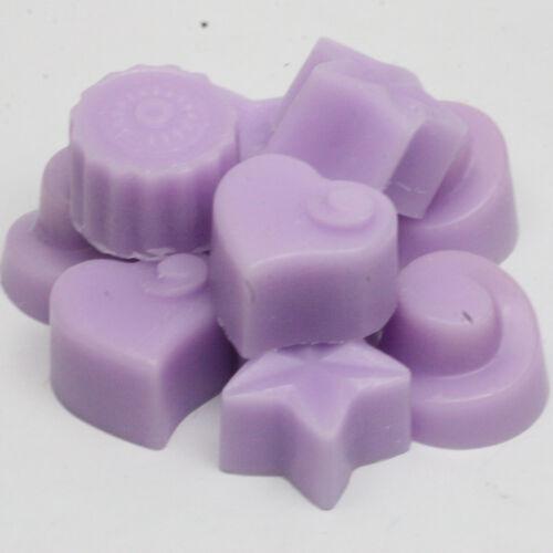Fleuri parfumée Fait à la main Très Parfumé Cire Fond//tartelettes 10 x 5 g