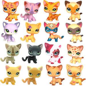 Lps Littlest Petshop Selten Katze Shorthair Cat Ebay
