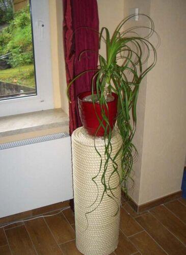 Günstiges Sisalseil Sisal Kratzbaumseil Kratzbaum 6,8,10 mm Seil Katzespielzeug