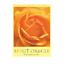 縮圖 2 - Spirit-Oracle-Deck-Cards-Esoteric-Fortune-Telling-Blue-Angel-New