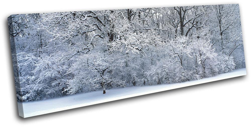 Snowy Forest Landscapes SINGLE TOILE murale ART Photo Print