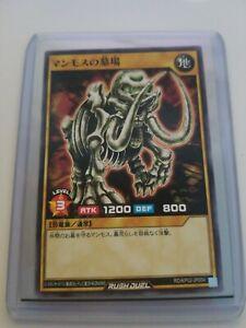 US Seller YuGiOh All-Knight Fever Common RD//KP02-JP038 Japanese RUSH DUEL