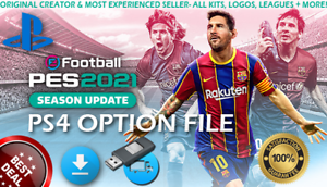Best ps4 option file