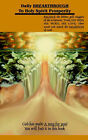 Daily Breakthrough to Holy Spirit Prosperity by Wolfgang D. Sauer (Paperback, 2005)