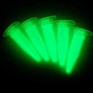 Epoxid Harz Lack bastel Kunst Tisch Leuchtfarbe YG500L 25g Leuchtpigment GRÜN f