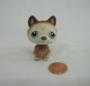 Littlest Pet Shop LPS #68 Brown & White POLAR HUSKY PUPPY