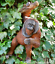 ORANGUTAN-hanging-from-branch-garden-ornament-decoration-Monkey-Ape-lover-gift thumbnail 1