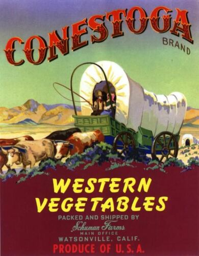 CRATE LABEL CONESTOGA COVERED WAGON WATSONVILLE WESTERN VINTAGE ORIGINAL