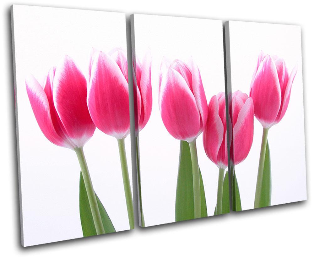 Tulips Flowers Floral TREBLE Leinwand Wand Kunst Bild drucken