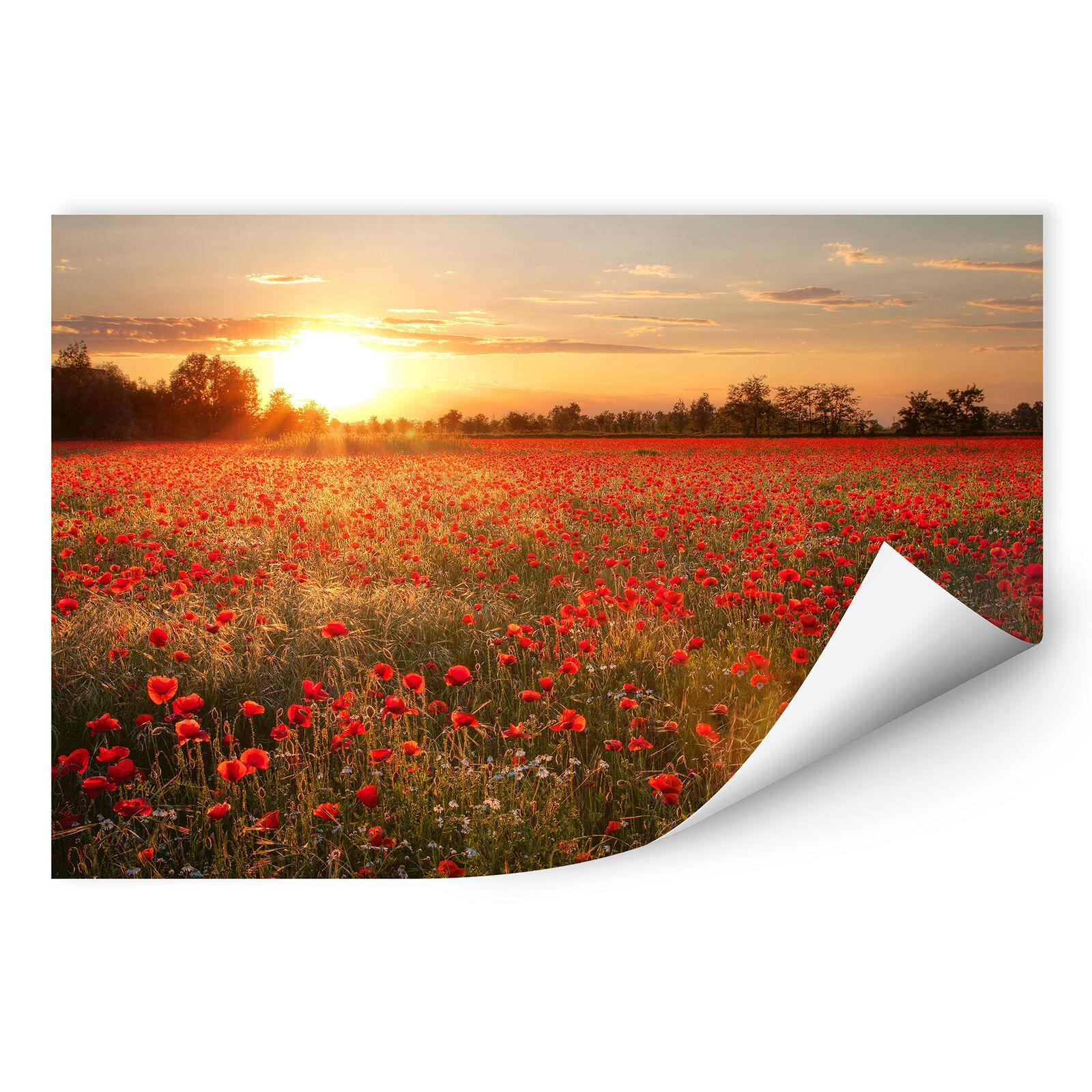 Wallprint tramonto Wallprint W-papavero campo nel tramonto Wallprint Rosso 7e3e16