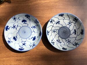 TWO 19TH CENTURY QING DYNASTY CHINESE BLUE AND WHITE PORCELAIN PLATES