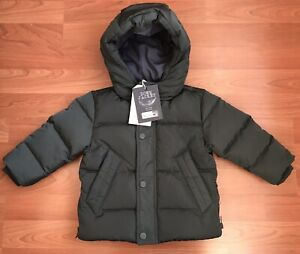 7710b1bccbf3 New Zara Baby Down Puffer Jacket Dark Green 9-12 Months