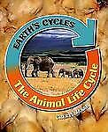 The Animal Life Cycle (Earth's Cycles)