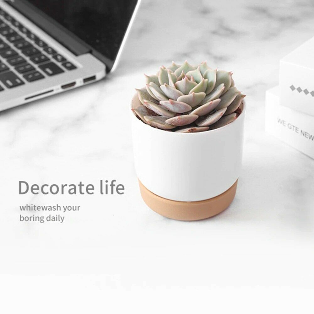 Automatic water-absorbing round small green plant pot