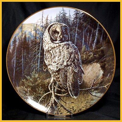 Danbury Mint - Owls Of North America - Woodland Warrior