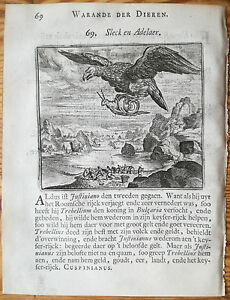 Marcus-Gerards-Fabels-Animals-Eagle-Snail-1617