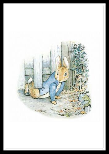 Beatrix Potter Peter Rabbit Art Aquarelle Imprime A4 sans cadre