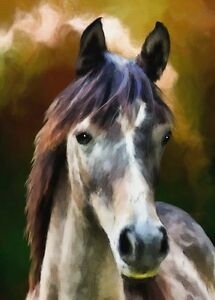 "perfect 24x36 oil painting handpainted on canvas "" horse""1454"