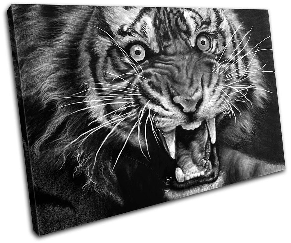 Tiger Wildlife Animals SINGLE TOILE murale ART Photo Print