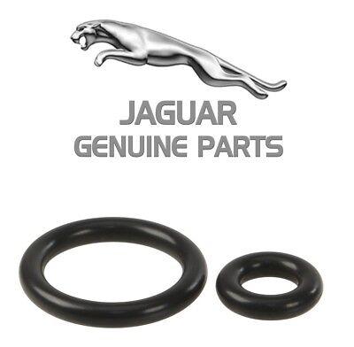 Genuine Fuel Injector O-Ring for Jaguar Vanden Plas XJ8 XJR XK8 2003 99 1999