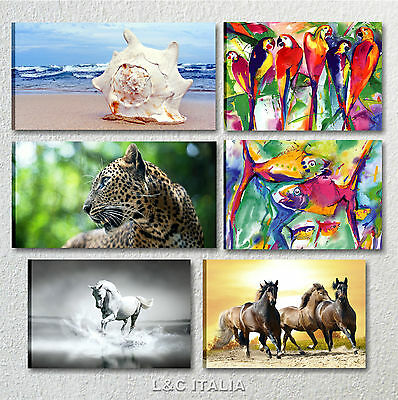 Animali quadro moderno stampe su tela quadri arredamento for Quadri arredo salotto