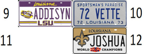 Louisiana design Bicycle license plate any name new custom personalized