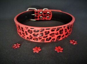 PATENT-LEATHER-red-dog-collar-leopard-boy-girl-male-female-big-long-tough-S-XL