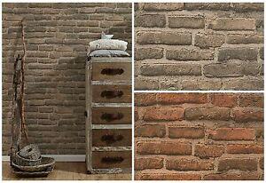 vlies tapete stein wand ziegelstein backstein klinker optik terra braun grau ebay. Black Bedroom Furniture Sets. Home Design Ideas