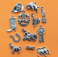 Rodeo Charm Collection 12 Tibetan Silver Tone Charms Free Shipping E112