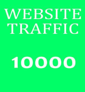 10000-Webseiten-Besucher-fuer-ihre-Website-Echte-Besucher-maximal-2-Seiten-inkl