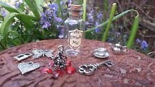 Drink Me Alice In Wonderland Glass Bottle with Key and other charms
