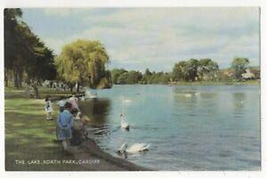Cardiff-The-Lake-Roath-Park-1970s-Postcard-178c