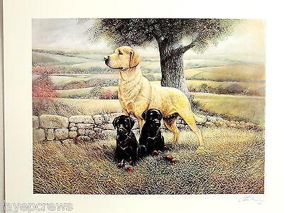 GOLDEN LAB DOG PICTURE BLACK LAB PUPPIES LABRADOR RETRIEVER ART PRINT ONLY 16X20