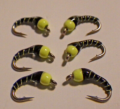 Hot Bead and Black NEW 2017-18 Chart Zebra Midge FL
