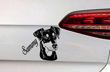 Hunde Aufkleber Pinscher Sticker mit Wunsch Namen Dog Decal JDM Premium Folie