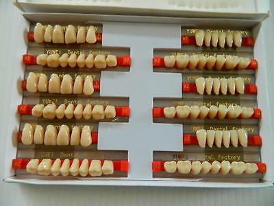 HALLOWEEN PROP - 3 Sets of Dental Quality Human Resin Teeth for Prop Building!