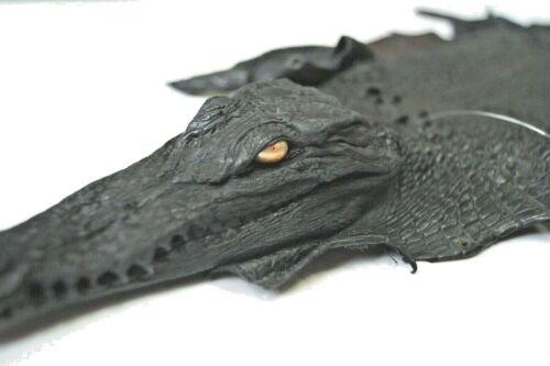 Crocodile leather hide with had 160 long