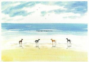 Whippet-greyhound-Dog-Contempory-Beach-Watercolour-Painting