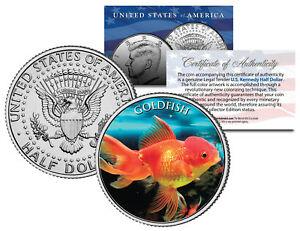 GOLDFISH-Fish-Series-JFK-Kennedy-Half-Dollar-U-S-Colorized-Coin