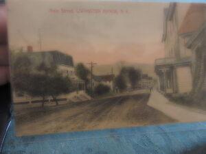 1908 Main St Livingston Manor Sullivan County New York NY Catskills Post Card