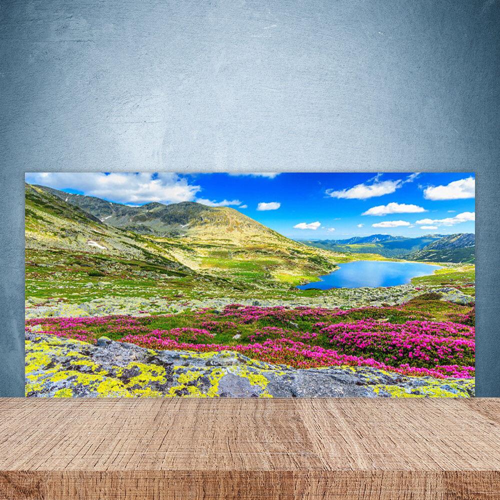 Crédence de cuisine en verre Panneau Paroi 100x50 Nature Montagne Baie Prairie