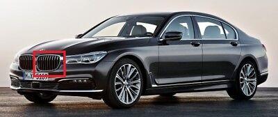 New Genuine BMW 6 Series F06 F12 F13 LCI 14-18 Front Left Grille 7370391 OEM