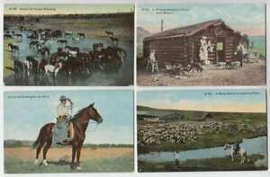 A0987-16-1900-039-s-Montana-Full-Color-Postcards