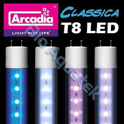 Arcadia Classica T8 LED Lamp Tube Light Waterproof IP67 - Convert Fluorescent T8